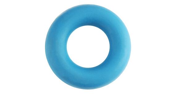 Black Diamond Forearm Trainer blue